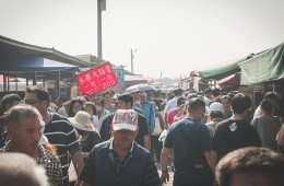 文化部影視及流行音樂產業局 108年補助專案–台南囡仔來讀冊 第2集預告