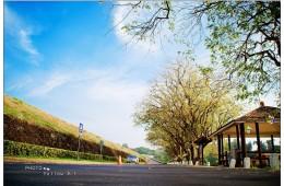 文化部影視及流行音樂產業局 108年補助專案–臺南囡仔來讀冊 第8集
